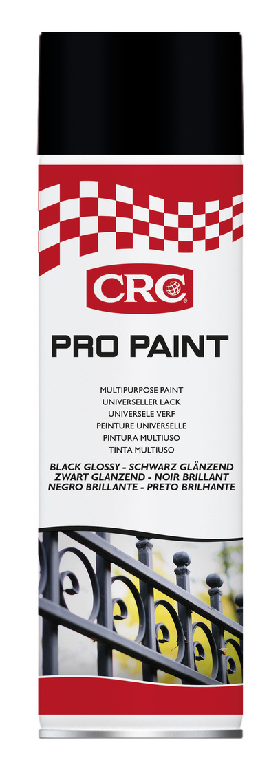 Sprayfärg Pro Paint svart blank 500 ml