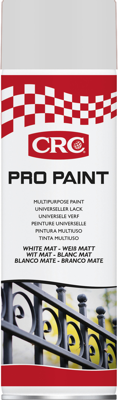 Sprayfärg Pro Paint vit matt 500 ml