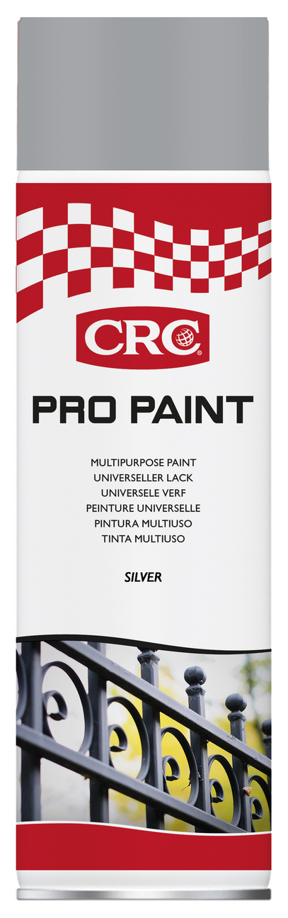 Sprayfärg Pro Paint Silver 500 ml